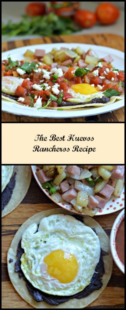 Huevos Rancheros are such a simple, yet delicious breakfast option. I always used to eat them growing up and I still enjoy them now.