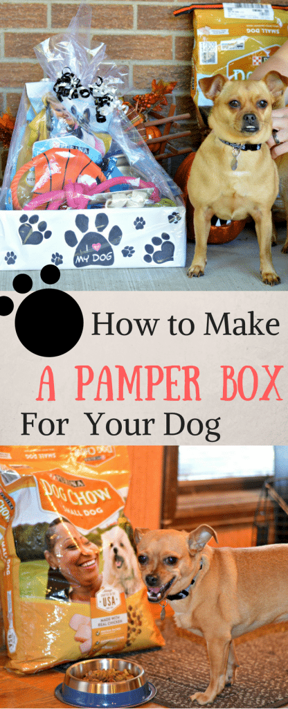 Check out this post to learn how to make an amazing Pamper Box for your dog.